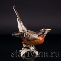 Фарорвая статуэтка птицы Дрозд-рябинник, Hutschenreuther, Германия, 1938-55 гг.