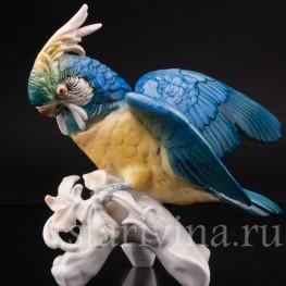 Фарфоровая статуэтка птицы Попугай какаду, Karl Ens, Германия, Сер. 20 в..